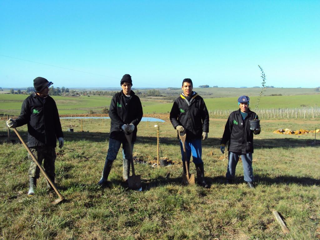 Nossa equipe planeja e executa projetos olivícolas no sul do Brasil